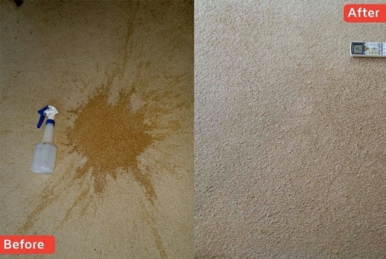 Carpet Stain Removal Wellington Stain Cleaning Masterton